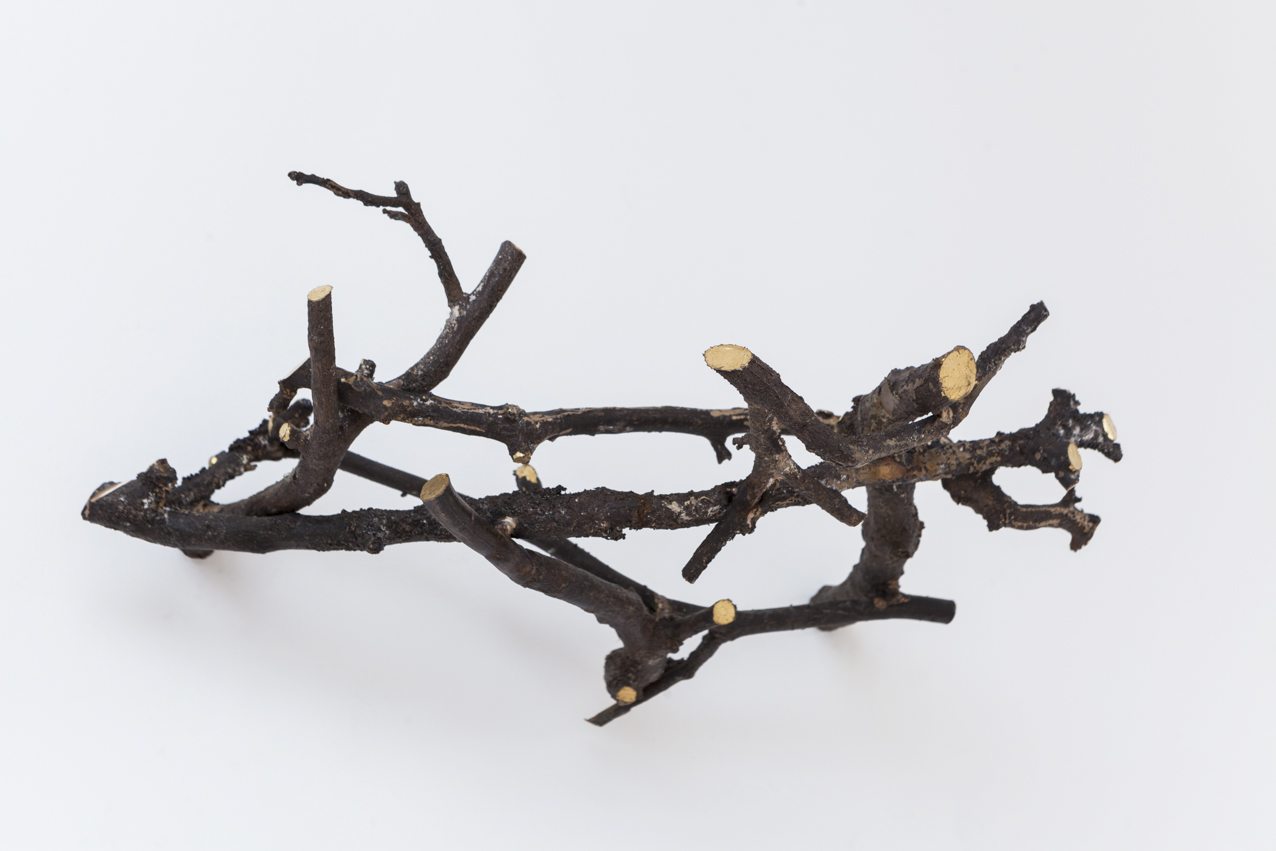 Stief Desmet / NEST/SHELTER. 2016 / Bronze cast of apple tree branches from the artist's garden, gold leaf / 5 pieces, dimensions variable